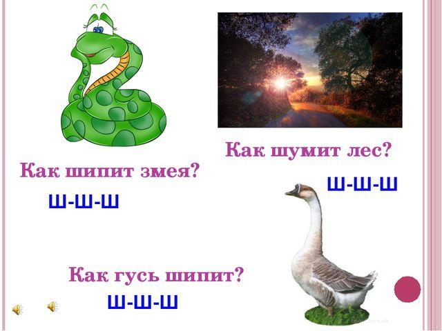 Как шипит змея? Как шумит лес? Как гусь шипит? Ш-Ш-Ш Ш-Ш-Ш Ш-Ш-Ш