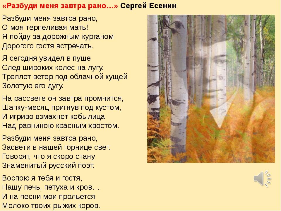 «Разбуди меня завтра рано…» Сергей Есенин Разбуди меня завтра рано, О моя те...