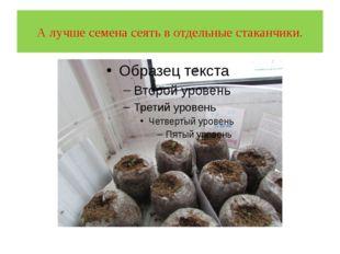 А лучше семена сеять в отдельные стаканчики.