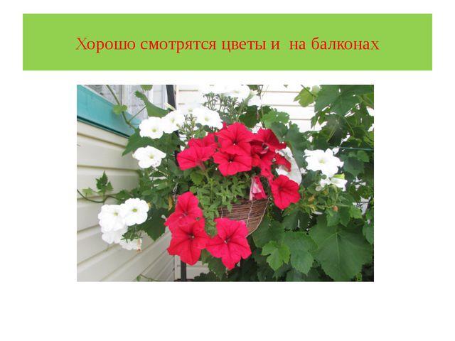 Хорошо смотрятся цветы и на балконах