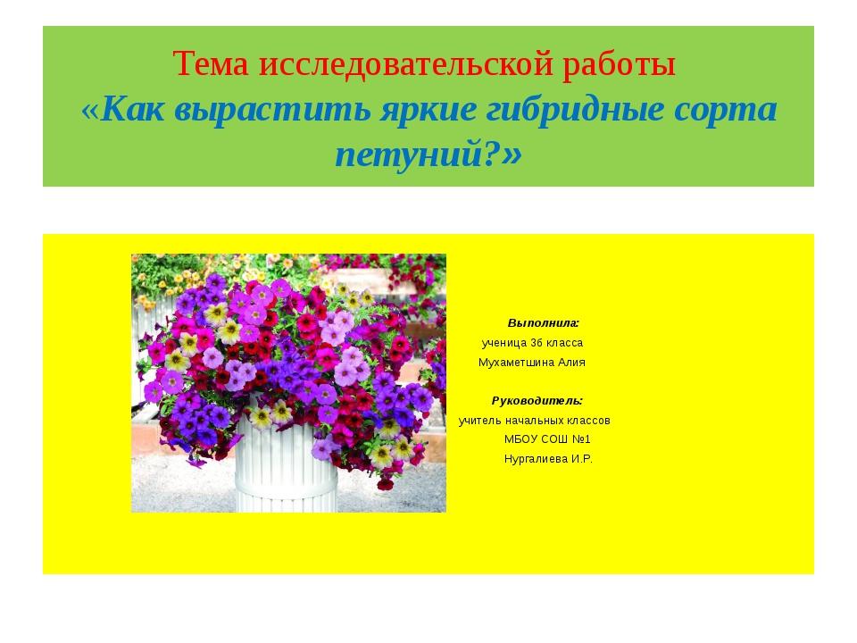 Тема исследовательской работы «Как вырастить яркие гибридные сорта петуний?»...