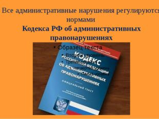Все административные нарушения регулируются нормами Кодекса РФ об администрат
