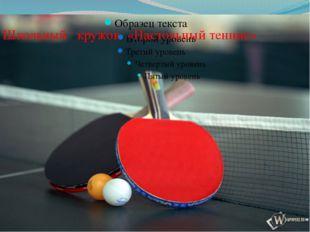 Школьный кружок «Настольный теннис»