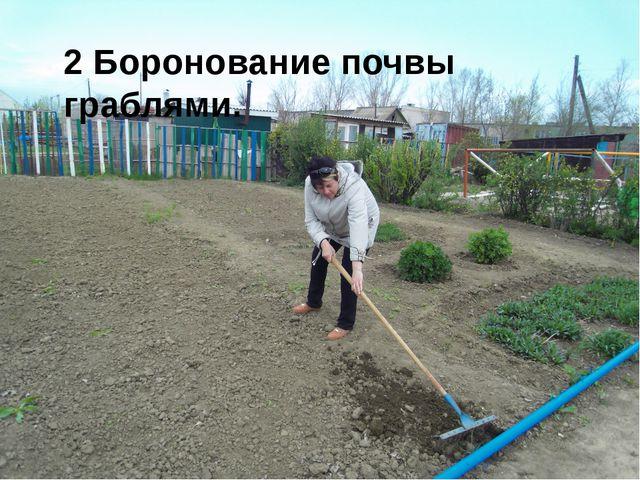 2 Боронование почвы граблями.