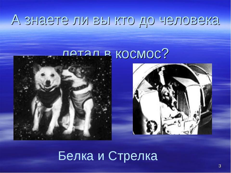 * А знаете ли вы кто до человека летал в космос? Белка и Стрелка
