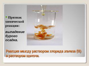 Реакция между раствором хлорида железа (III) и раствором щелочи. Признак хими