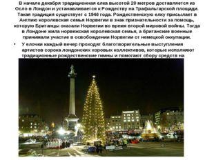 В начале декабря традиционная елка высотой 20 метров доставляется из Осло в Л