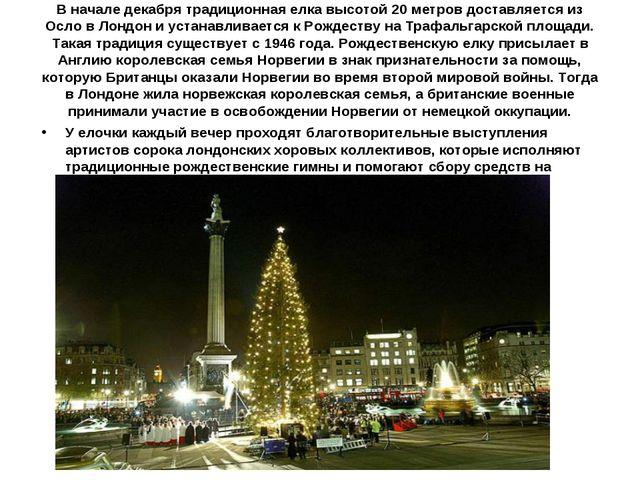 В начале декабря традиционная елка высотой 20 метров доставляется из Осло в Л...