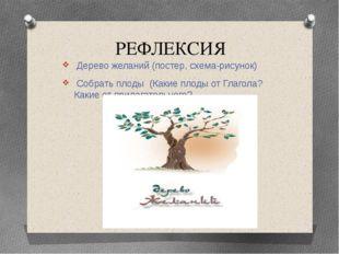 РЕФЛЕКСИЯ Дерево желаний (постер, схема-рисунок) Собрать плоды (Какие плоды о