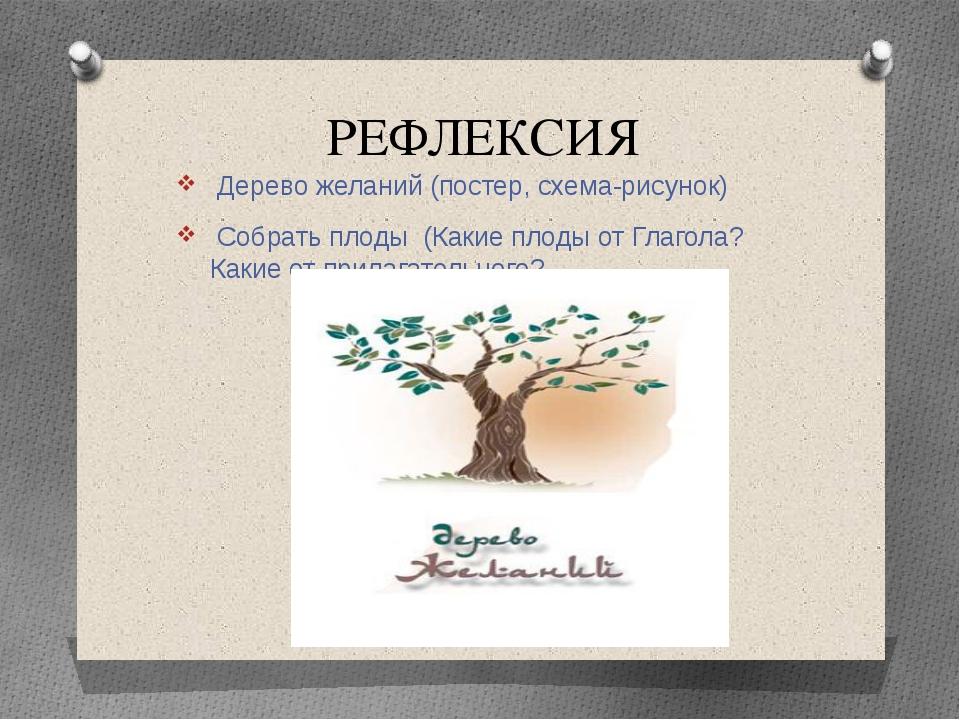 РЕФЛЕКСИЯ Дерево желаний (постер, схема-рисунок) Собрать плоды (Какие плоды о...