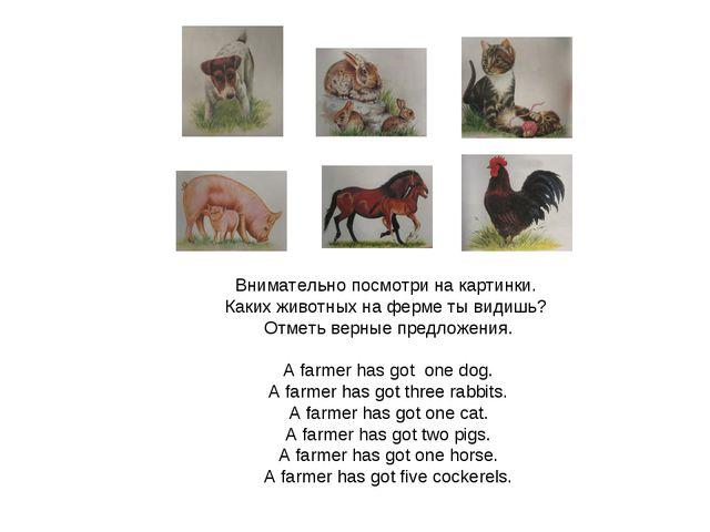 Внимательно посмотри на картинки. Каких животных на ферме ты видишь? Отметь...