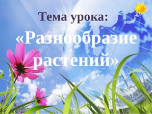 Тема урока: «Разнообразие растений»