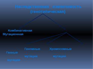 Наследственная изменчивость (генотипическая) Комбинативная Мутационная Геномн