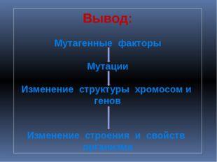 Вывод: Мутагенные факторы Мутации Изменение структуры хромосом и генов Измене