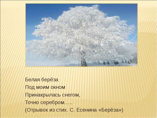 Белая берёза Под моим окном Принакрылась снегом, Точно серебром….. (Отрывок и...