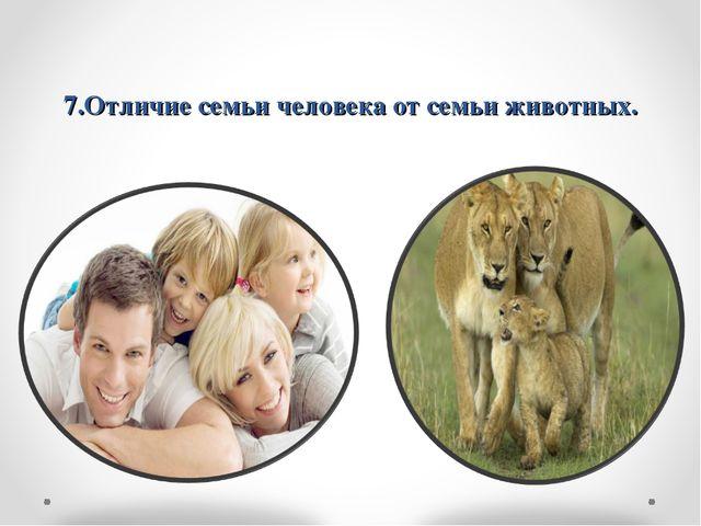 7.Отличие семьи человека от семьи животных.