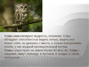 Сова символизирует мудрость, познание. Совы обладают способностью видеть ночь