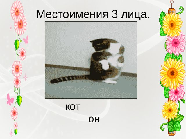 Местоимения 3 лица. кот он