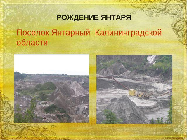Поселок Янтарный Калининградской области РОЖДЕНИЕ ЯНТАРЯ