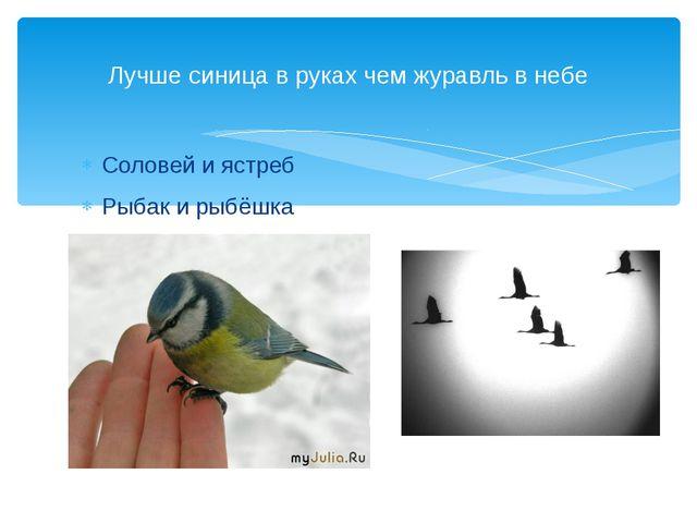 Соловей и ястреб Рыбак и рыбёшка Лучше синица в руках чем журавль в небе