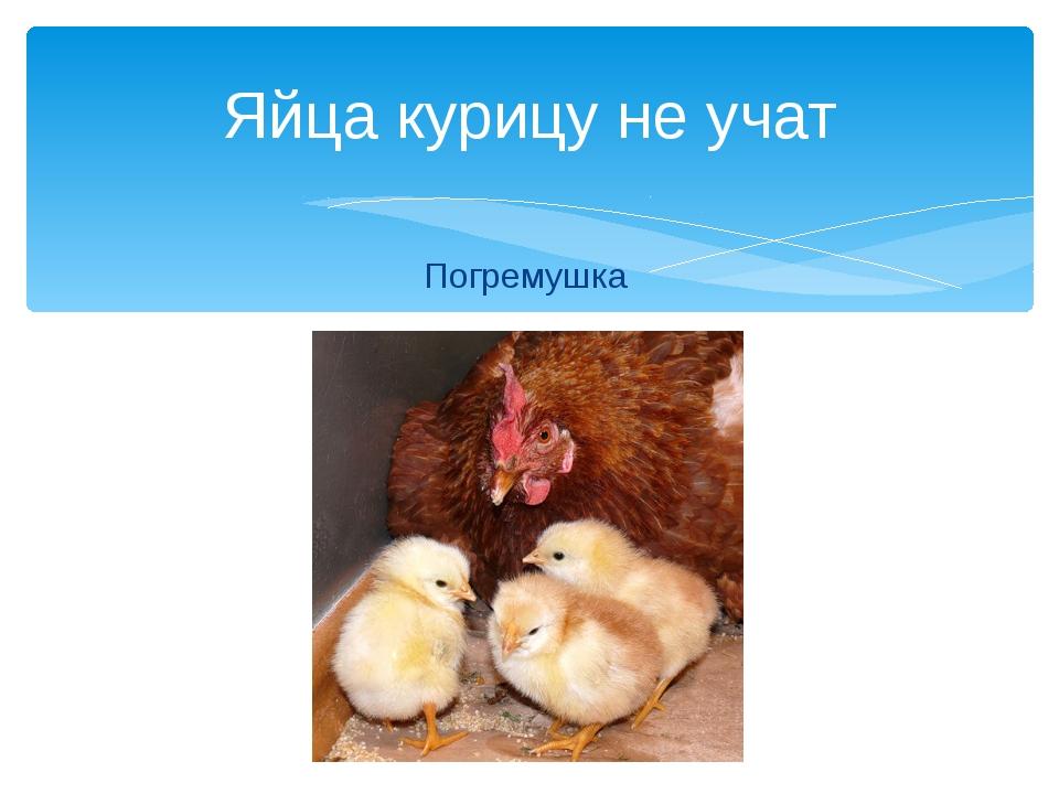 Погремушка Яйца курицу не учат