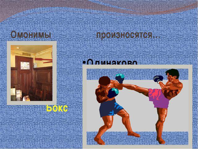 Омонимы произносятся… Одинаково Бокс