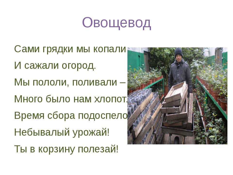 Овощевод Сами грядки мы копали И сажали огород. Мы пололи, поливали – Много б...