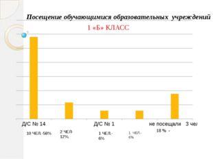 1 «Б» КЛАСС 1 ЧЕЛ.-6% 1 ЧЕЛ.-6% 2 ЧЕЛ-12%. 10 ЧЕЛ.-58% Посещение обучающимис
