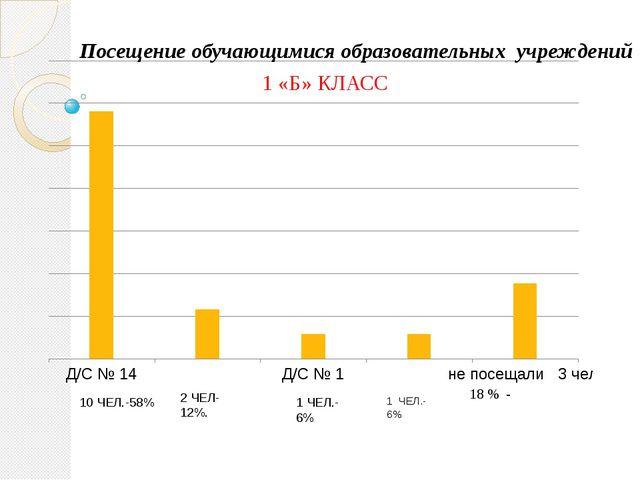 1 «Б» КЛАСС 1 ЧЕЛ.-6% 1 ЧЕЛ.-6% 2 ЧЕЛ-12%. 10 ЧЕЛ.-58% Посещение обучающимис...
