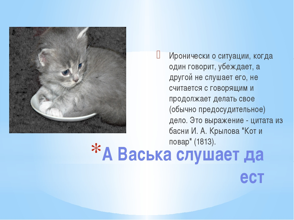 А Васька слушает да ест Иронически о ситуации, когда один говорит, убеждает,...