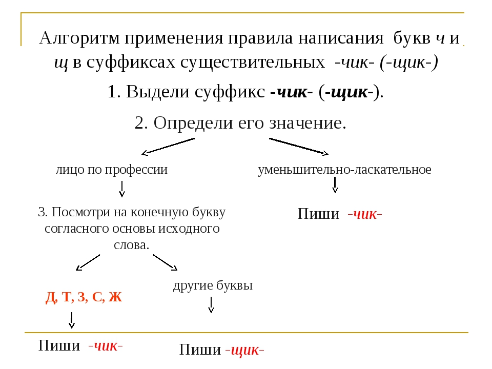 Алгоритм применения правила написания букв ч и щ в суффиксах существительных...