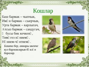 Кошлар Баш бармак – чыпчык, Имән бармак – сыерчык, Урта бармак – карлыгач, Ат