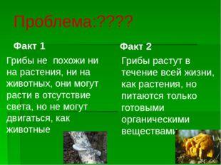 Проблема:???? Факт 1 Грибы не похожи ни на растения, ни на животных, они могу