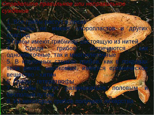 Определите правильное или неправильное суждение 1. Все грибы растут в лесах 2...
