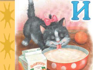 Йогурт пьёт из миски Маленькая киска.