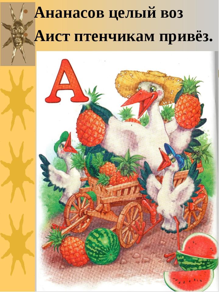 Ананасов целый воз Аист птенчикам привёз.