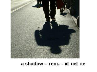 a shadow – тень – көлеңке