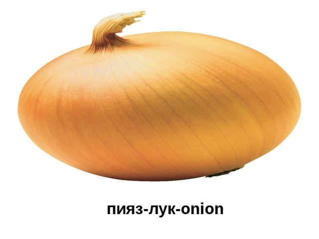 пияз-лук-onion