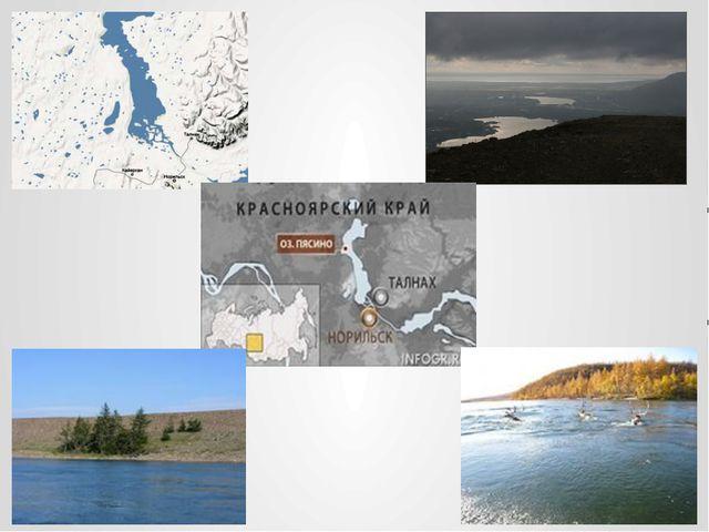 Река Пясина невдалеке от своего истока.