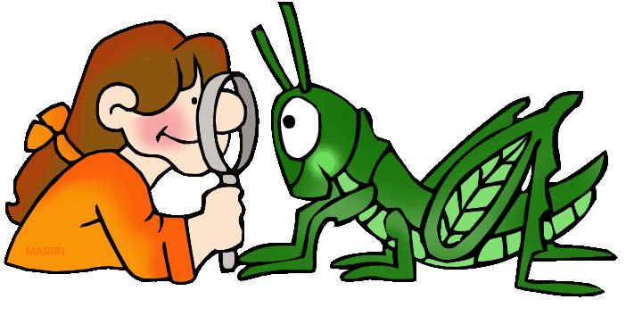 observation-clipart-grasshopper_observation