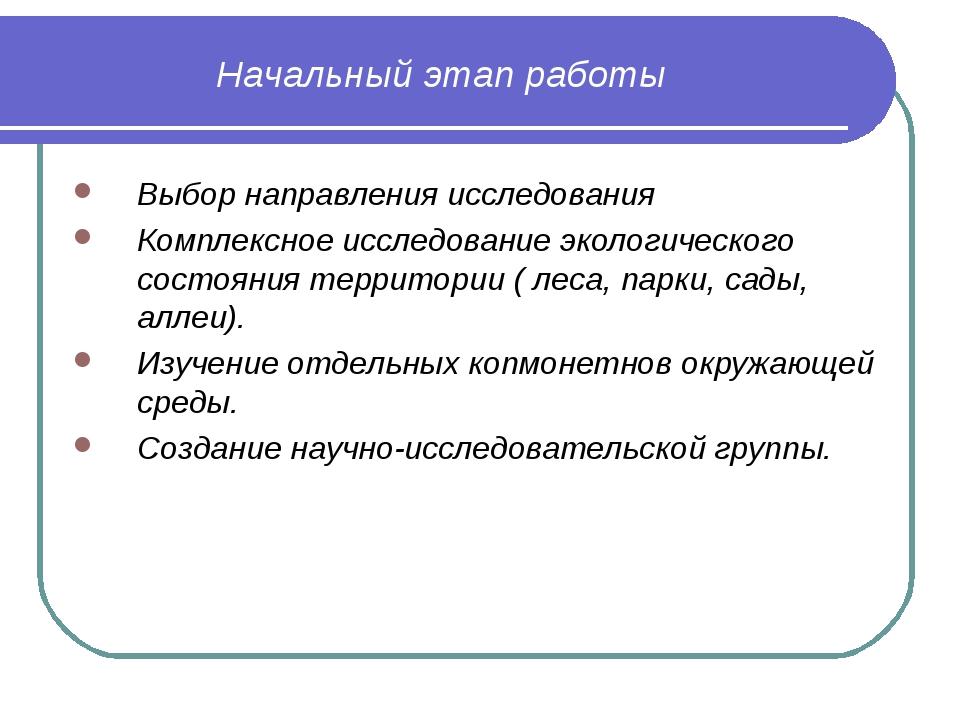 Начальный этап работы Выбор направления исследования Комплексное исследование...
