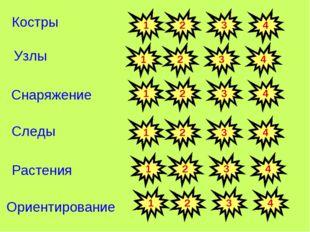 Узлы Костры Снаряжение Следы Растения Ориентирование 1 2 3 4 1 2 3 4 1 2 3 4