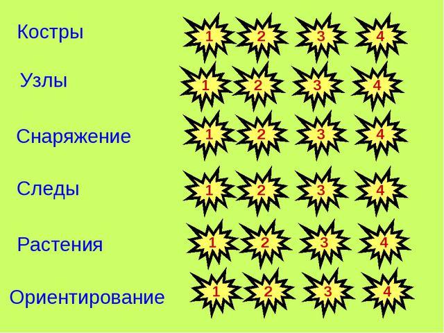 Узлы Костры Снаряжение Следы Растения Ориентирование 1 2 3 4 1 2 3 4 1 2 3 4...