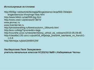 Используемые источники: http://900igr.net/kartinki/biologija/Biogeotsenoz-le