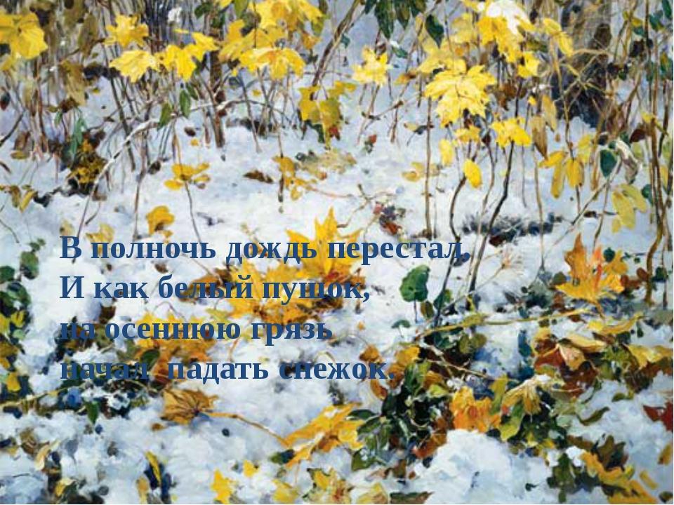В полночь дождь перестал, И как белый пушок, на осеннюю грязь начал падать сн...