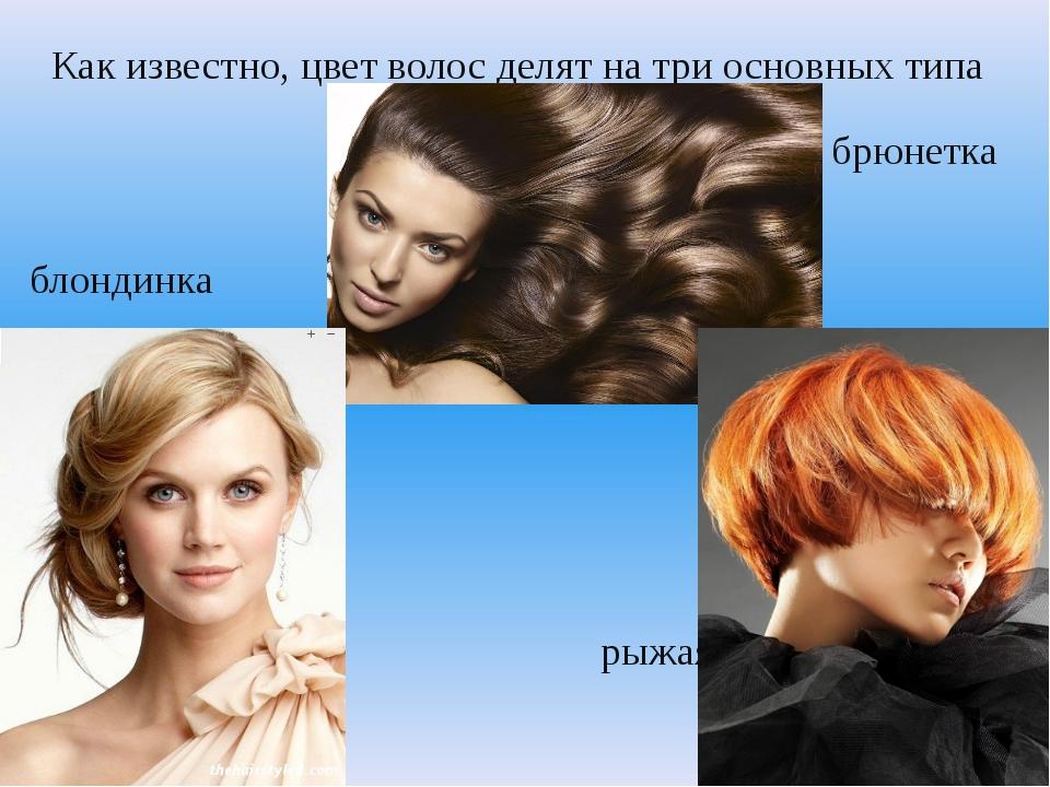 Как известно, цвет волос делят на три основных типа брюнетка блондинка рыжая