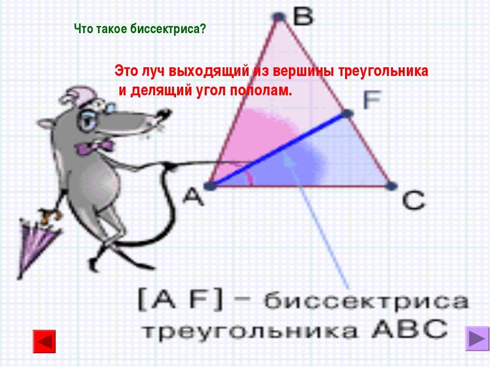 Что такое биссектриса? Это луч выходящий из вершины треугольника и делящий уг...