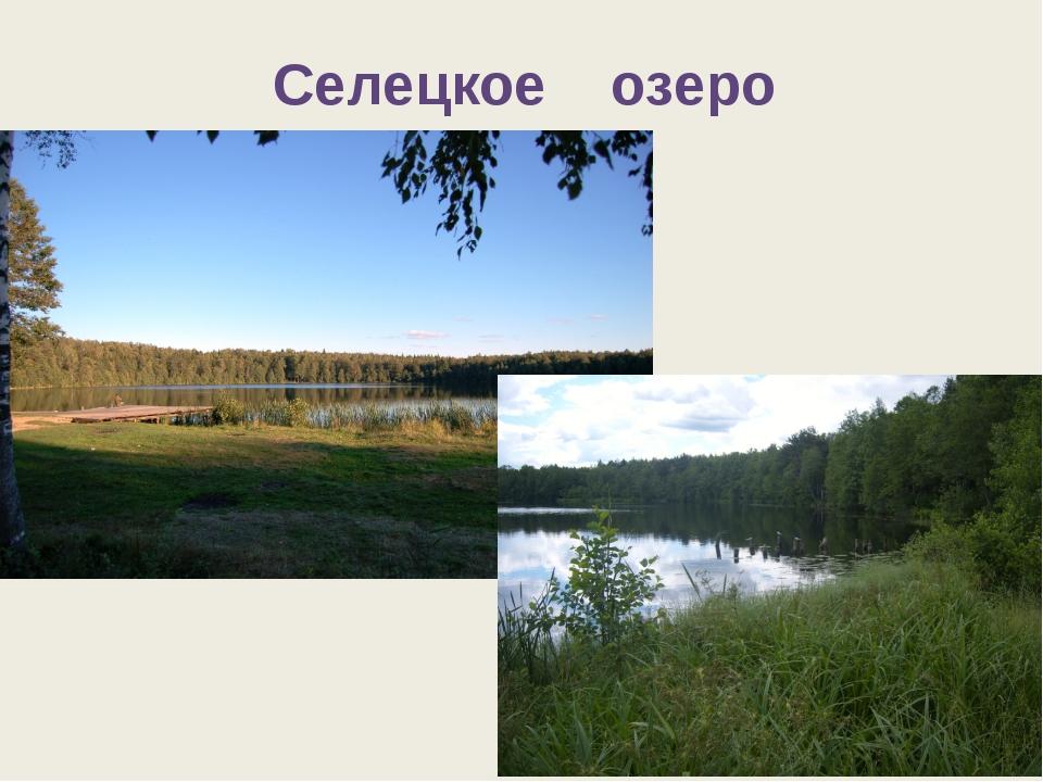 Селецкое озеро