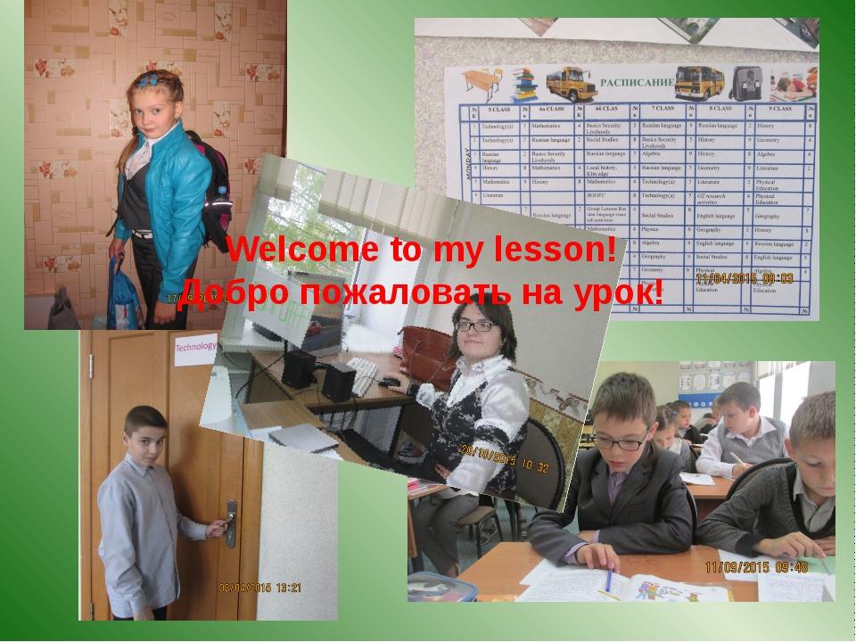 Welcome to my lesson! Добро пожаловать на урок!