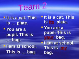It is a cat. This is … plate. You are a pupil. This is … bag. I am at school.